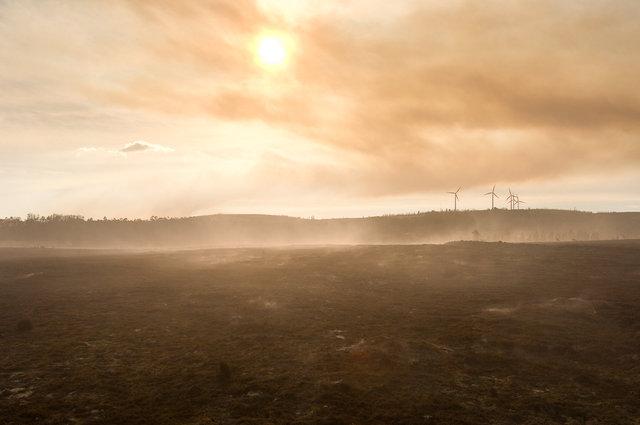 Forestfire-32.jpg