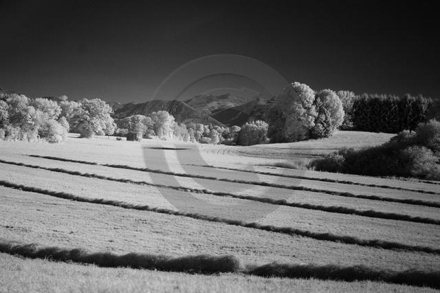 Landschaften_Copyright_376.jpg