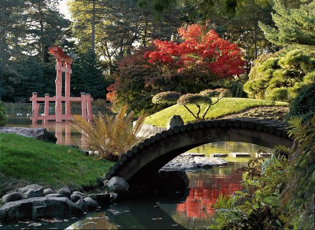 Brookyn Botanic Garden