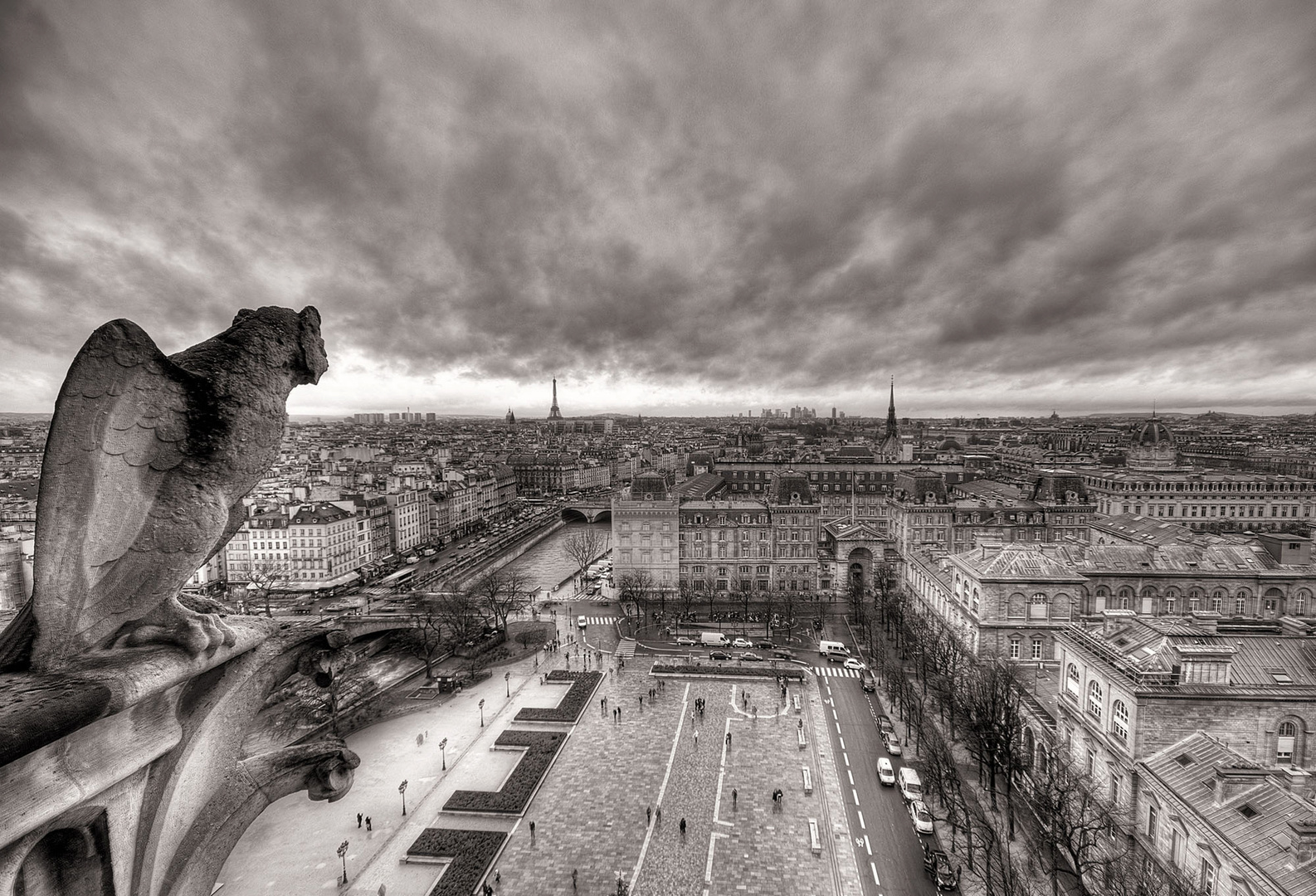 View from Notre Dame Cathedral