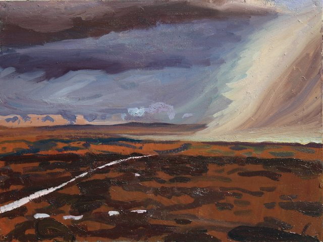 Rain on the Plain   20 x 24""