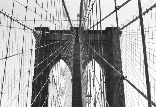 NY 2011