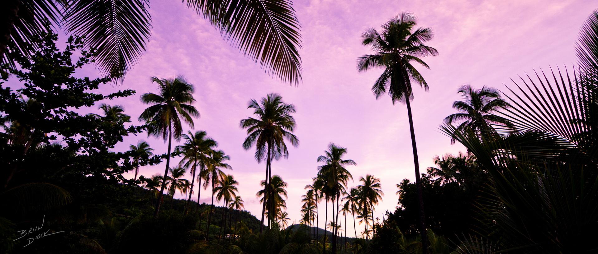 Dominica (2).jpg