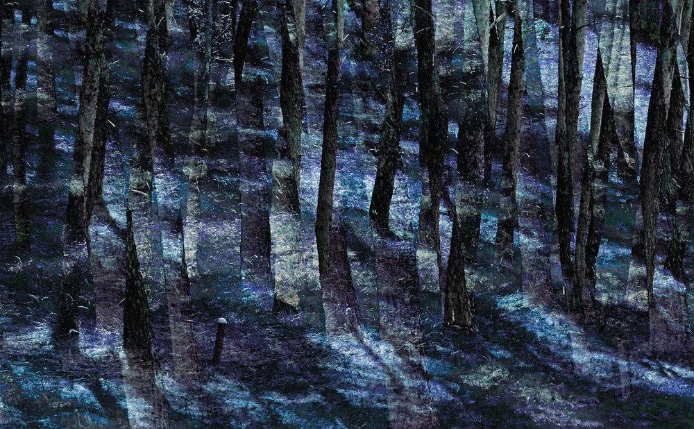 Nocą, vigrafia 179, 112x78