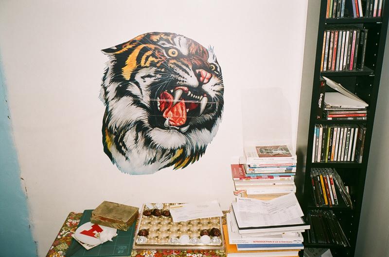tigre - à l'étage.jpg