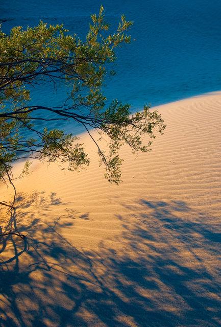 Death Valley-0600.jpg