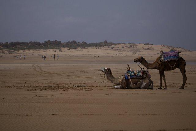 Morocco_028.jpg
