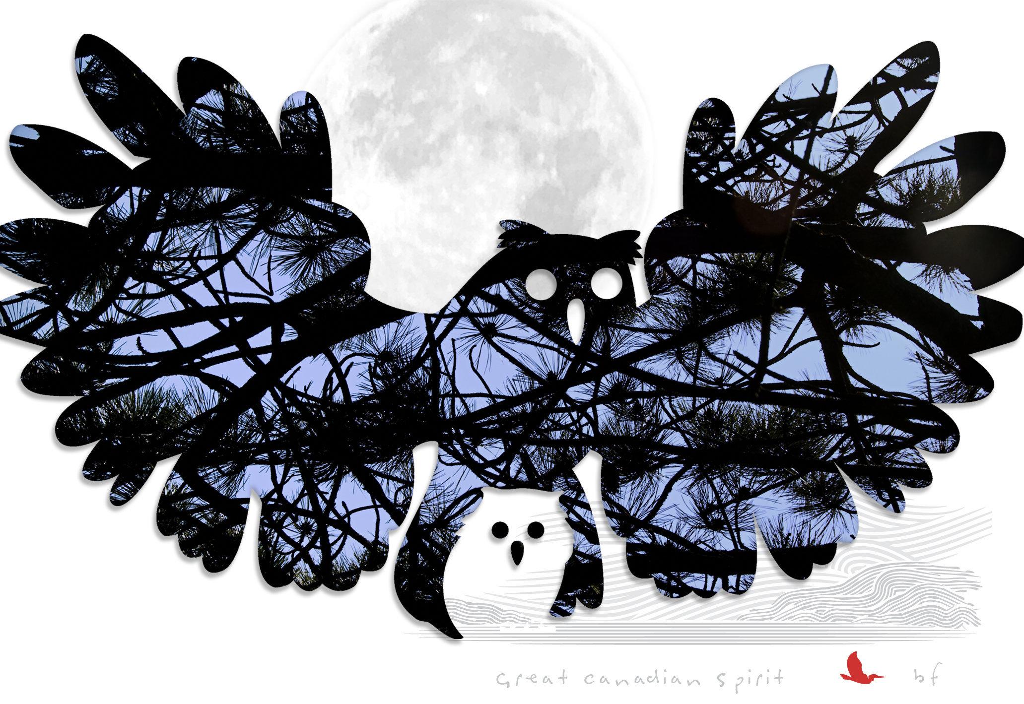 owl-07.jpg