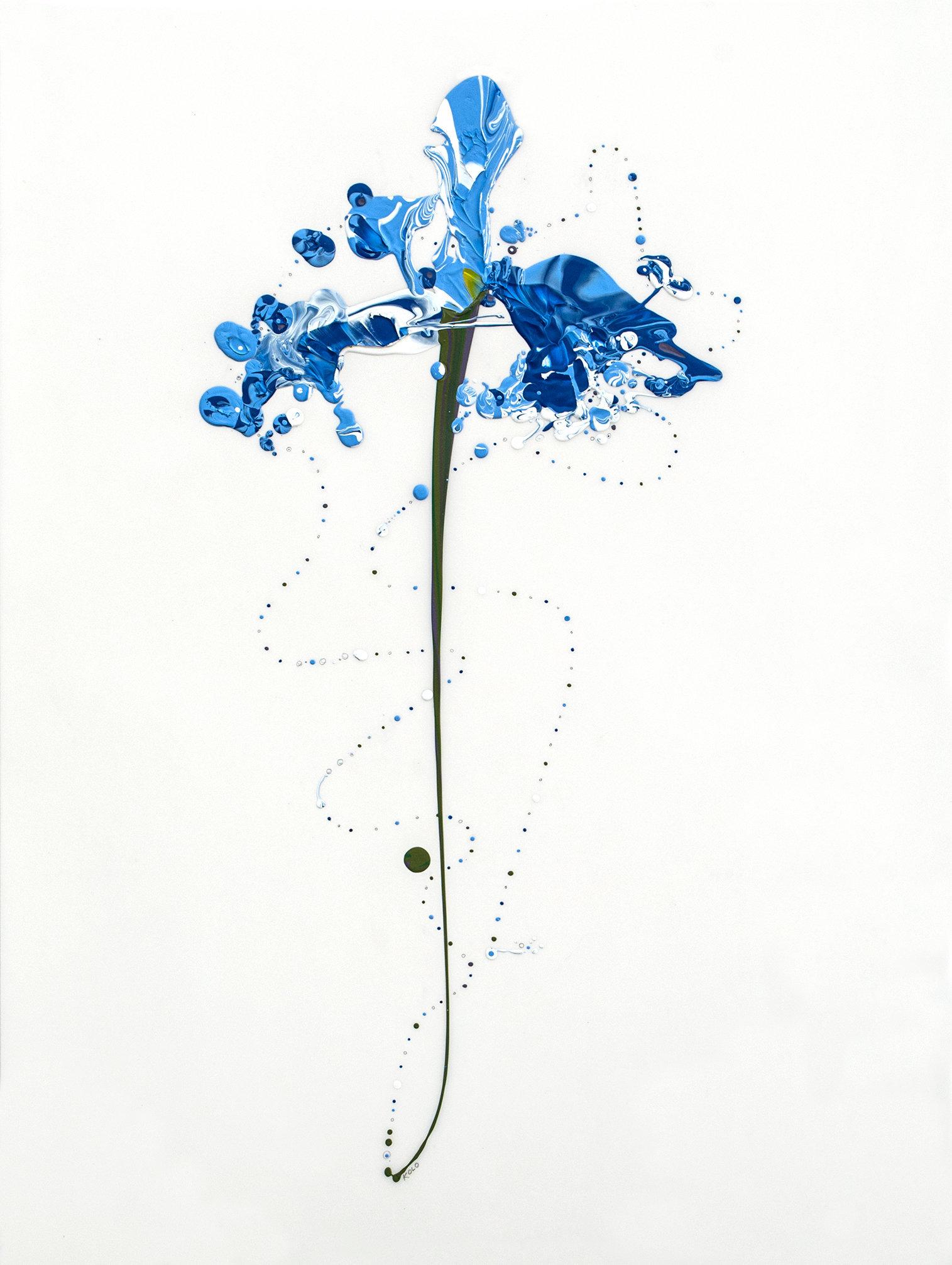 Flora XXVI