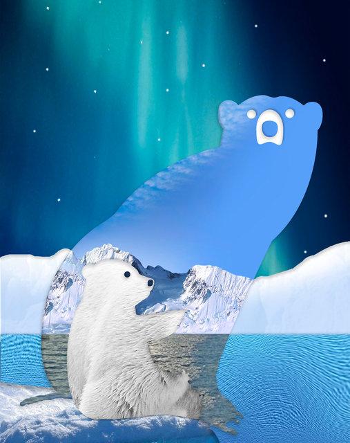Bear-90.jpg