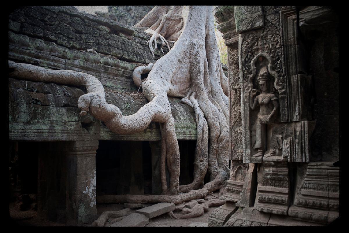Cambodge30Temples d'Angkor.jpg