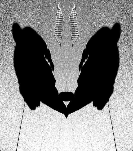 © CORDAY - Gray No. 14 - Twins