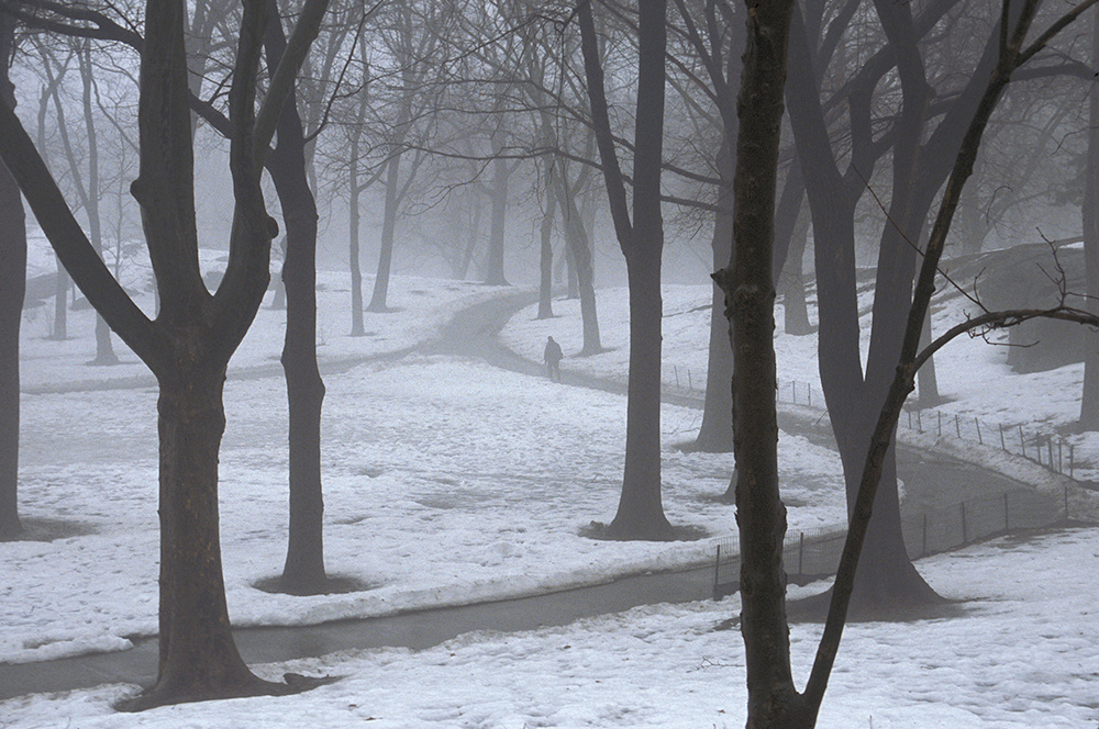 Central Park, man walking in snow