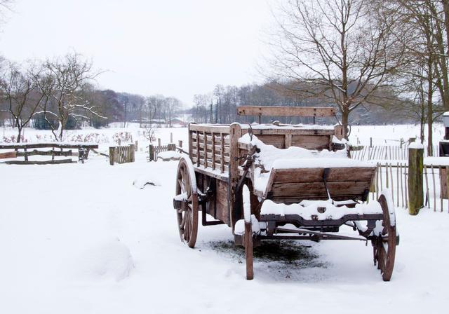 Oude veetransport kar
