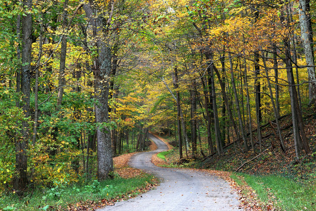 A country road in southern Ohio.