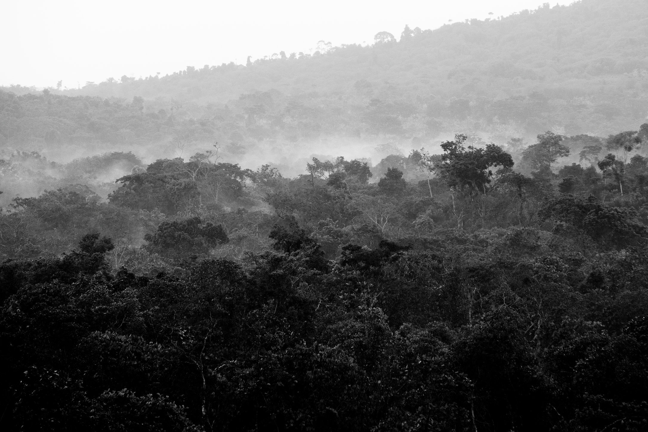 Ntenyeru Rise © Linelle Deunk