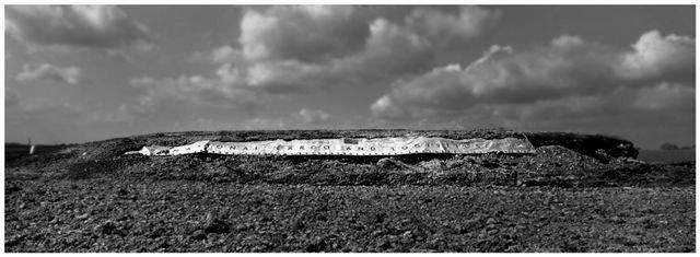 agricultural landscapes no 3.jpg