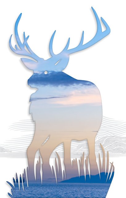 Elk-05.jpg