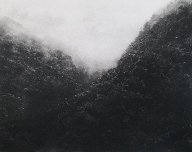 "Rain Forest, Costa Rica     22 x 27"""