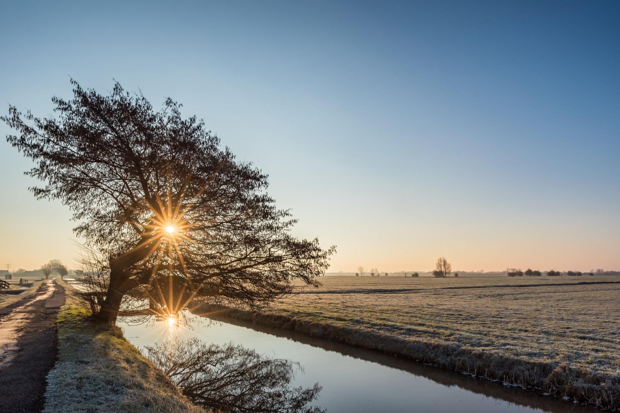 Een wintermorgen in de Rijnenburg Polder