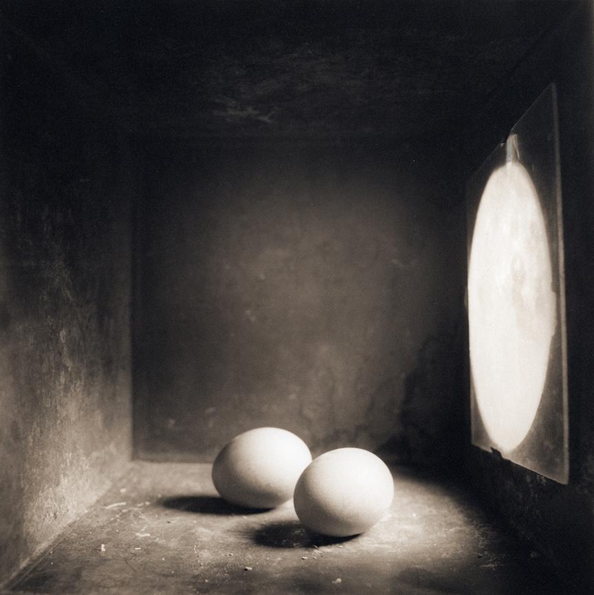 Eggs, c 2000