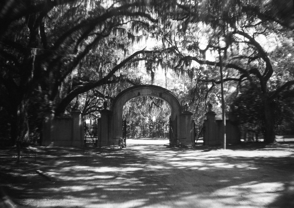 Wormsloe Plantation, outside Savannah, Georgia USA