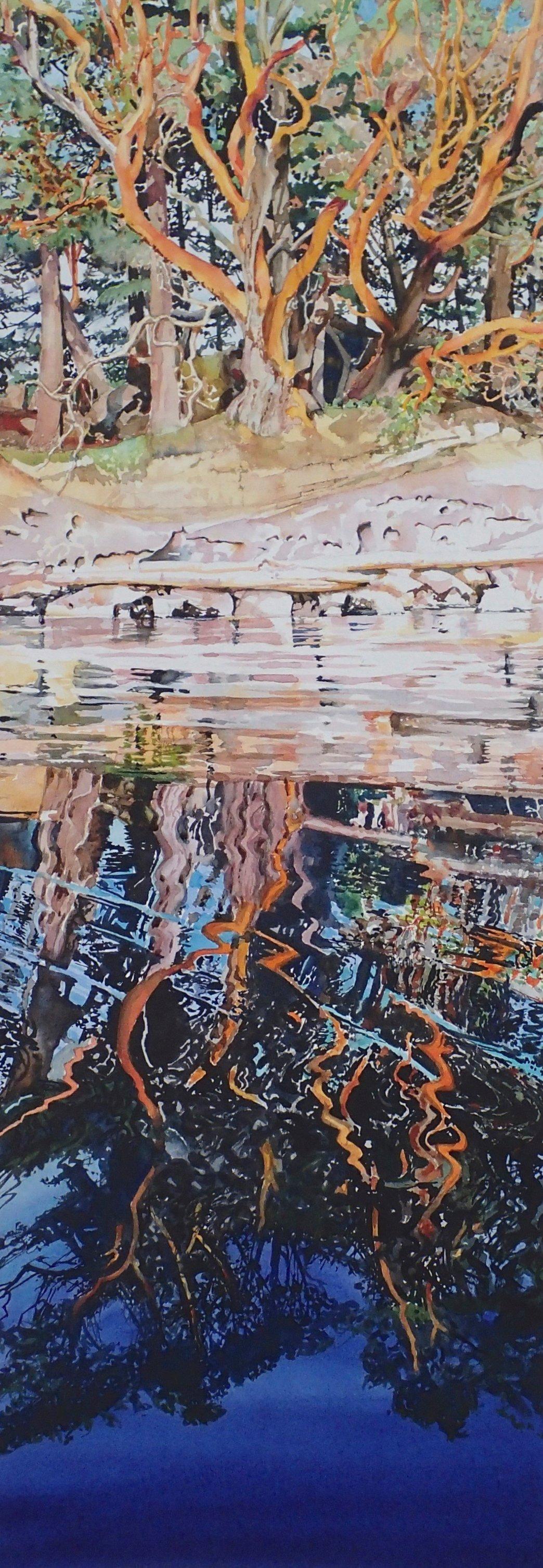 Wallace Island Reflections 1