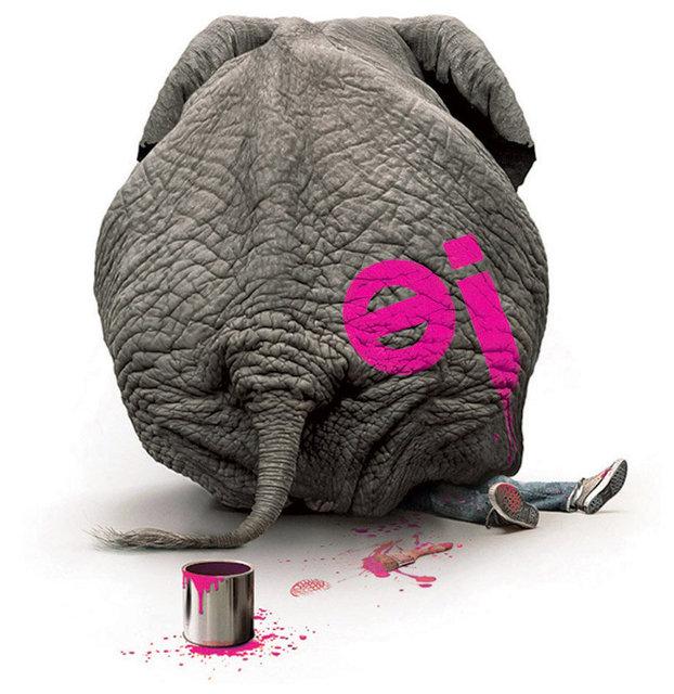 EJ Elephant Low-ResRGB.jpg
