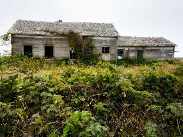 Eurkea House.jpg