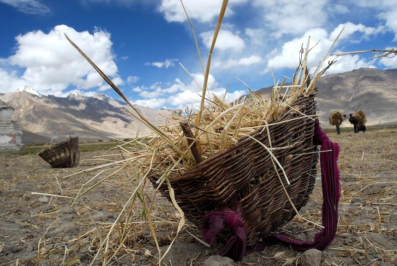 Ladakh_36.jpg