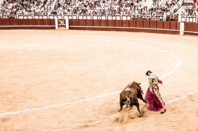 The Bullfight-193-bewerkt-3.jpg