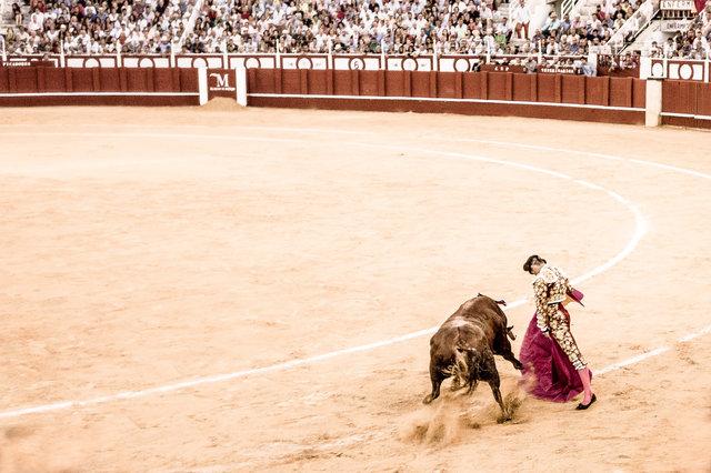 The Bullfight-193-bewerkt-3.jpg