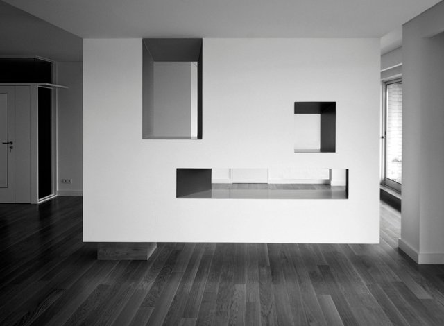 Project: Carlos Guimarães and Luis Soares Carneiro