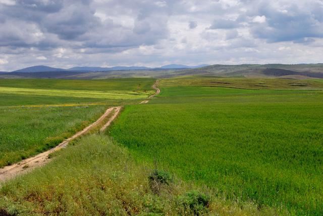 Le chemin de Fuente de Campos, Estremadure