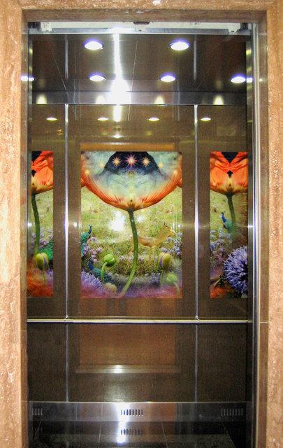 Garden (installed in elevator)