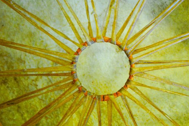 Sol de Yokahu