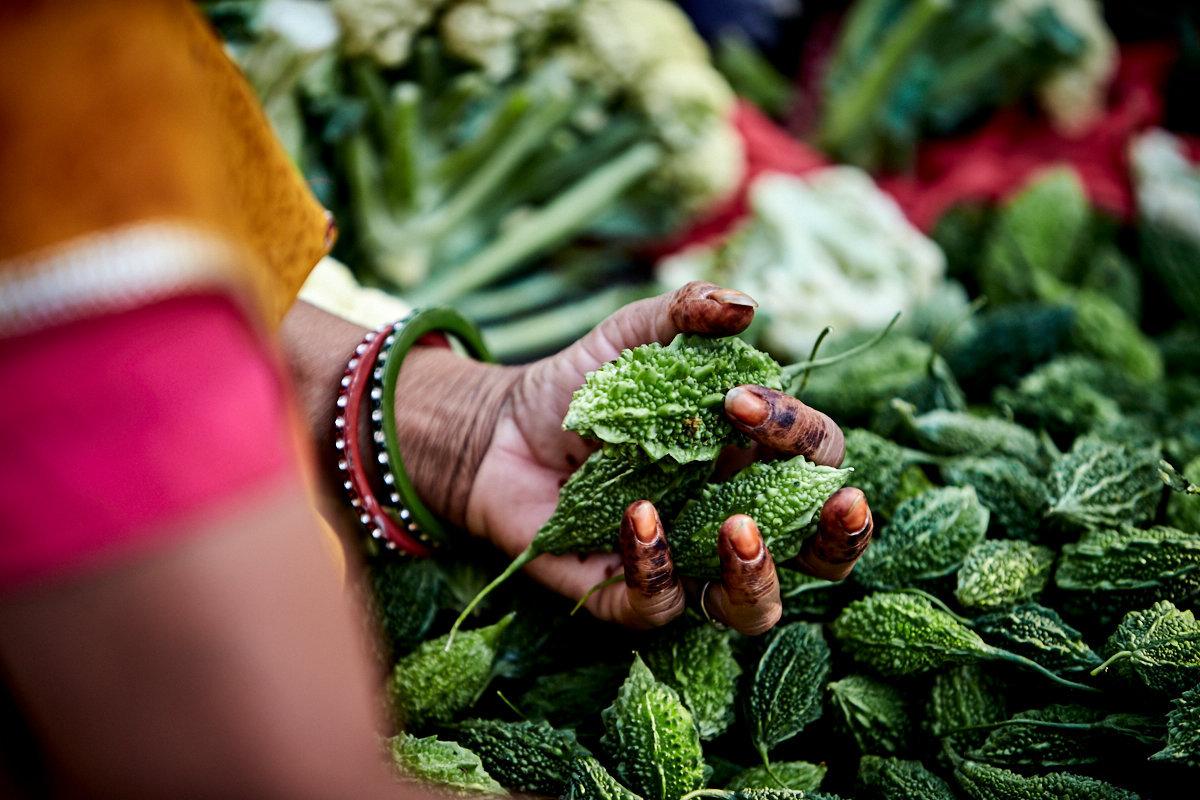 171024_Jaipur_21034.jpg