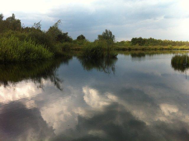 De Groote Peel, The Netherlands