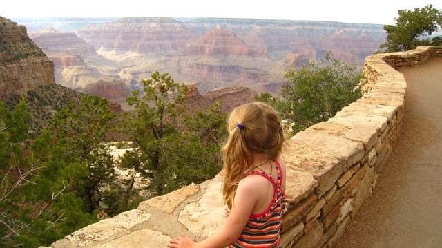 taking it in, grand canyon