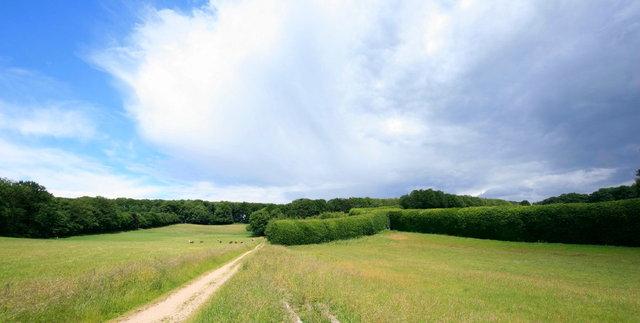 oosterbeek, landgoed mariendaal
