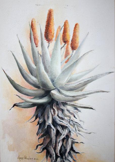 Succulent 2010.jpg