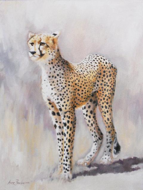 Cheetah 2015.jpg