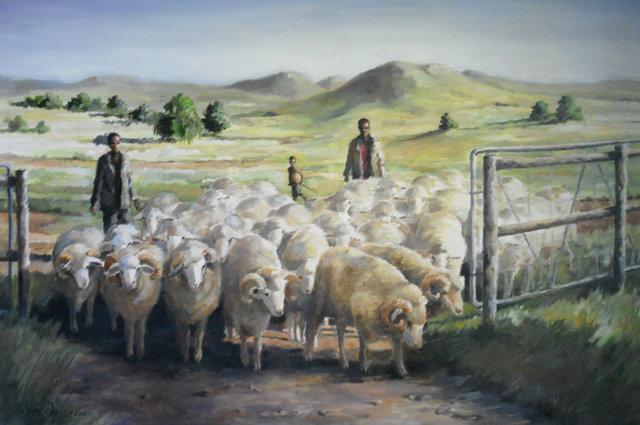 Sheep 2014.jpg
