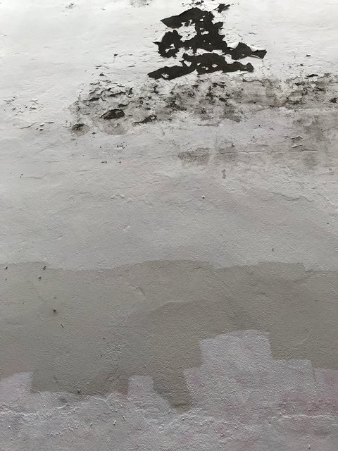 Reykjavic artist's yard wall