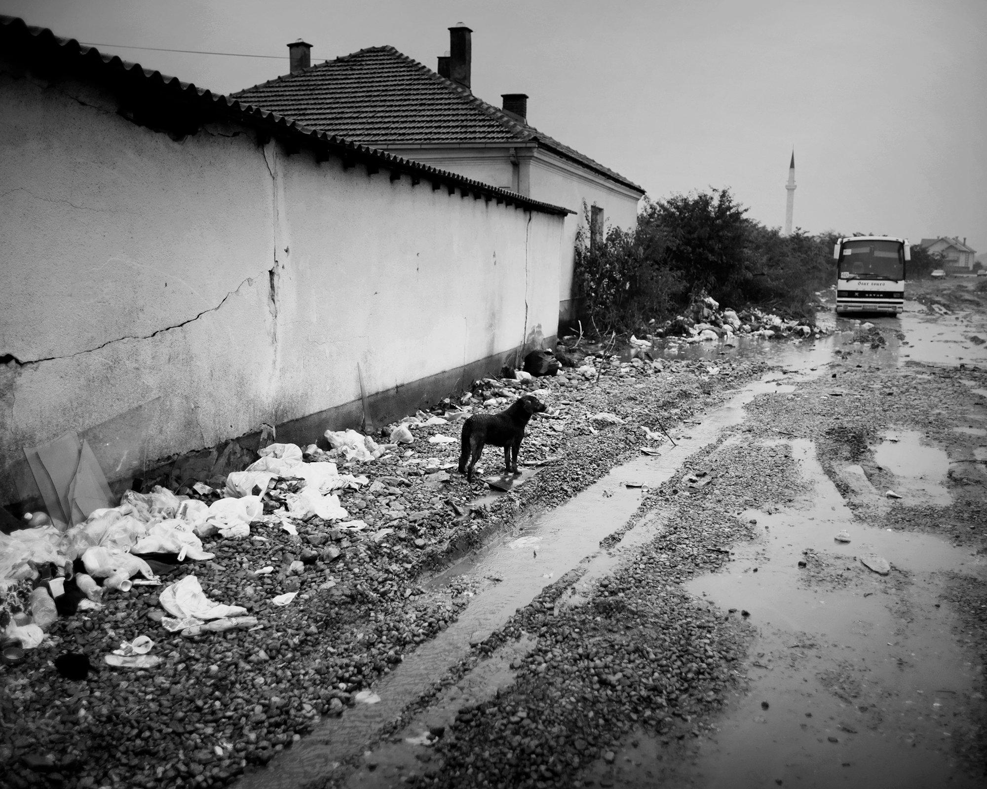 A Serbian Limbo #52.jpg