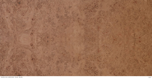 ENGLISH BROWN OAK BURL 557.jpg
