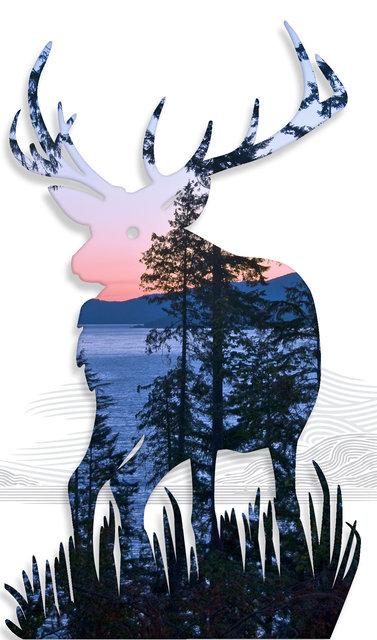 Elk-06.jpg