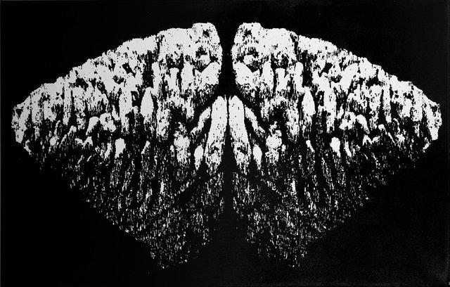 Windungen - Flügel, 2010, 110x170cm2.scharf.jpg