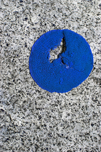 blue_note_2015.jpg