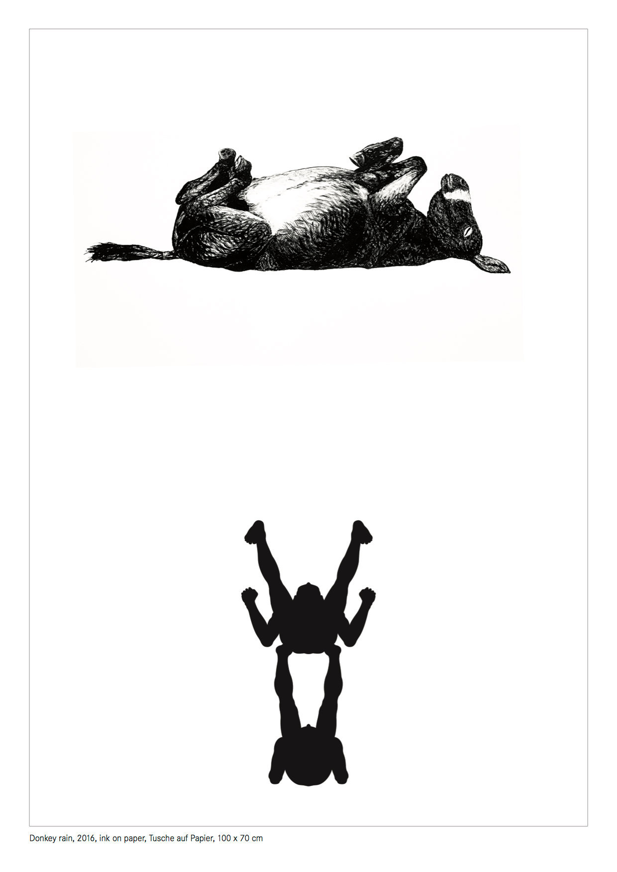 Donkey rain.jpg
